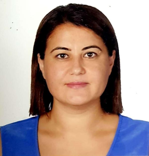 pınar teltik